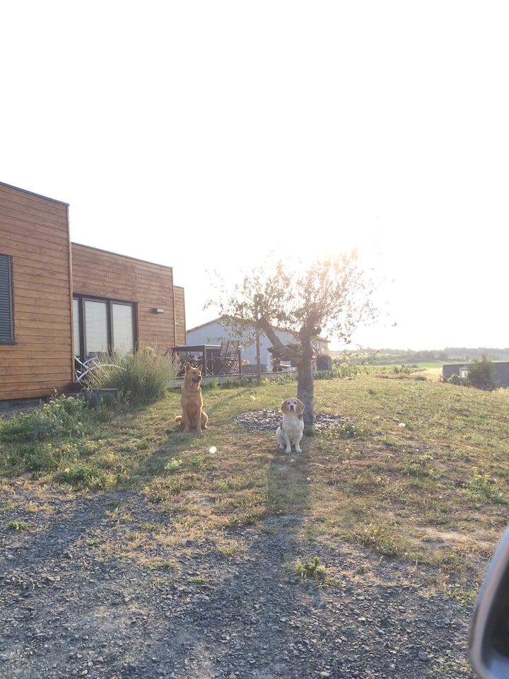 Chambre sdb et wc privés dans belle maison bois