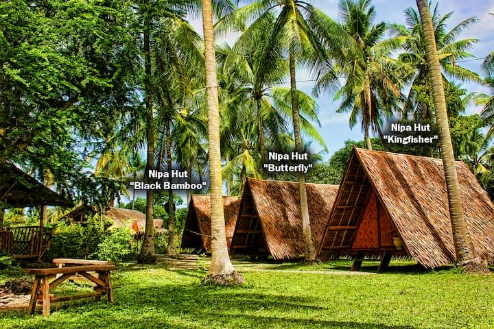 "ARCHERY-ASIA Nipa Hut ""Black Bamboo"" in Moalboal - PH - Hut"