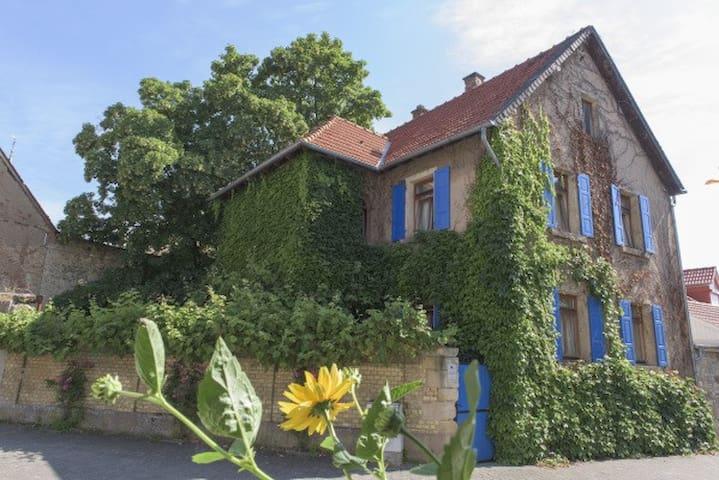 Südländisches Flair mitten im schönen Weinbaudorf