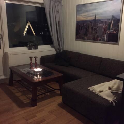 Helleveien (PHONE NUMBER HIDDEN) Bergen - Bergen - Apartamento