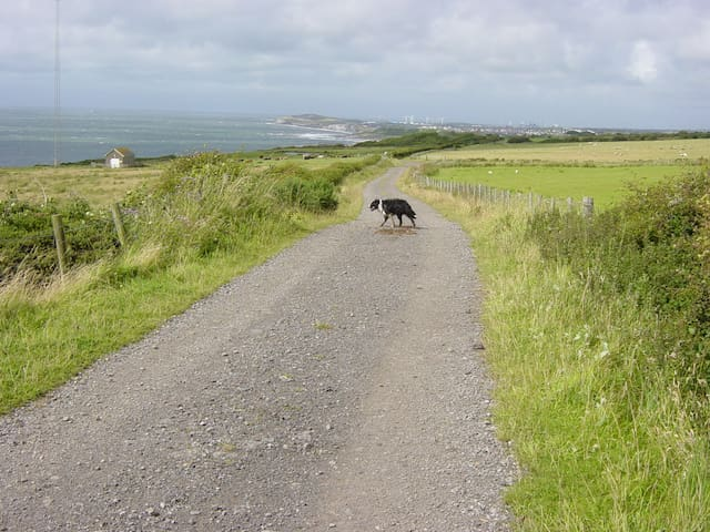 Coast path to Harrington/Workington.. Within walking distance of house. Return by train??