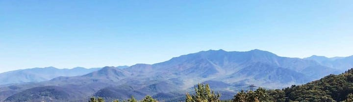 HIGH PENTHOUSE! MT LE CONTE VIEWS!  INDOOR POOL!!!