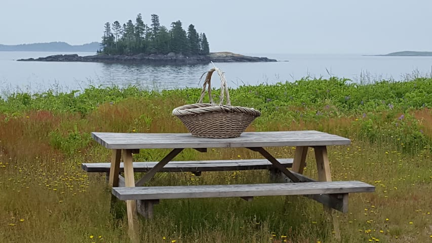 A Charming Beachfront Cottage in Downeast Maine