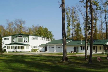 Wildwood Inn Bed & Breakfast - Baudette - Wikt i opierunek