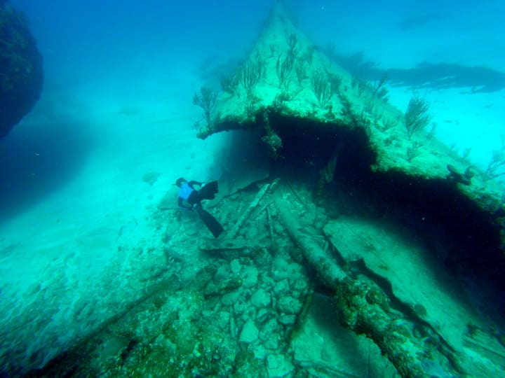 Optional free diving