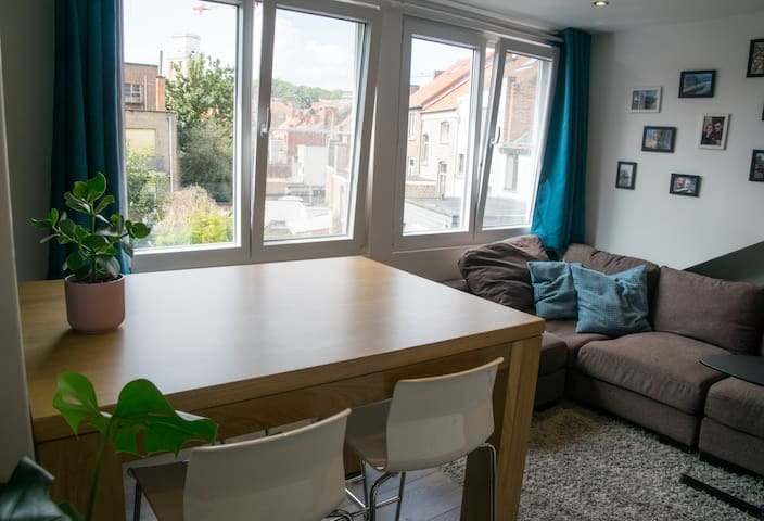 Cosy apartment in the city centre (+ free parking)
