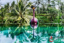 180˚ overlooking the green rice fields, this big Villa, located just in front of our infinity swimming pool, with traditional Balinese Balé that surrounds it, you will enjoy the nice Butterfly and Dragonfly bedrooms equipped with Air Conditioning.