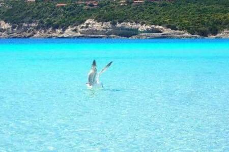 Splendido bilocale vicino al mare. - Santa Teresa Gallura - Rumah