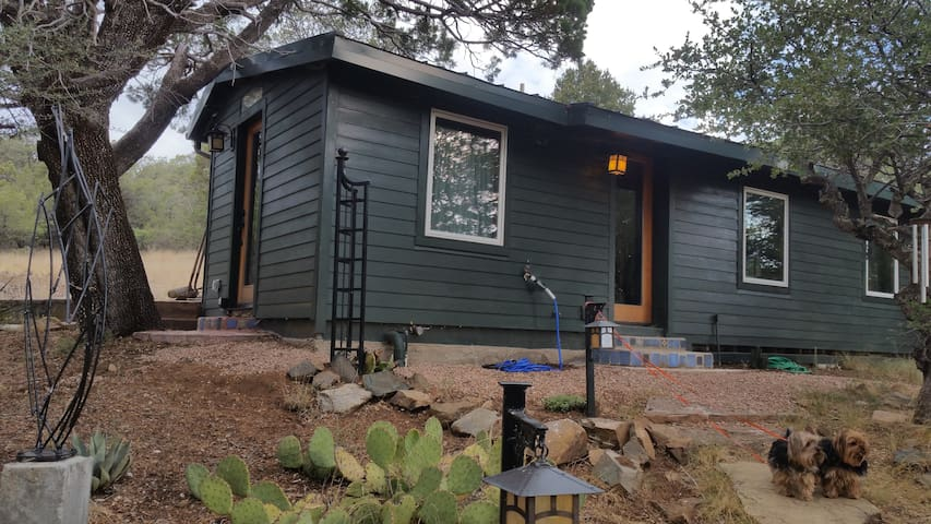 Mountain cabin 15 minutes to downtown. - Silver City - Hytte