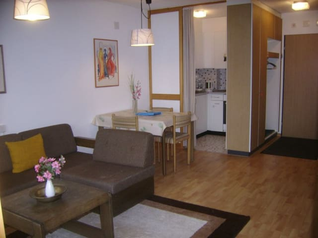 Ferienwohnung Gabriela 23 Defuns Brigels, (Breil/Brigels), 65034B, Apartment with Shower/Bath/Toilet, for max. 2 People