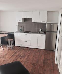charmant petit appartement dans l'hypercentre - Grenoble - Huoneisto