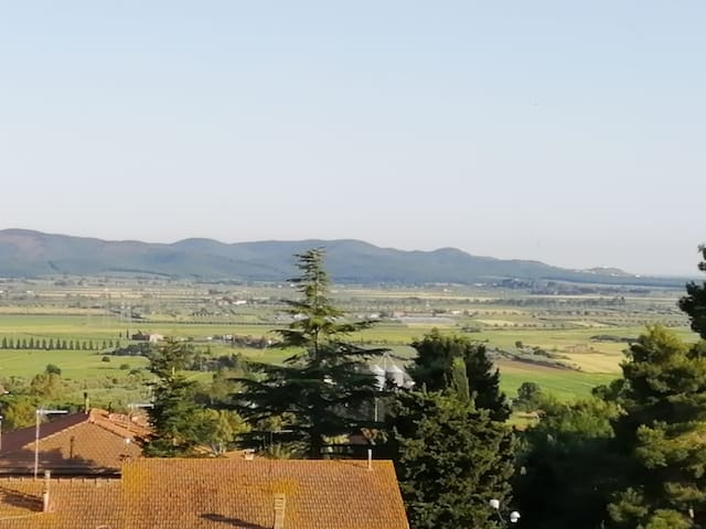 Panorama dalle camere