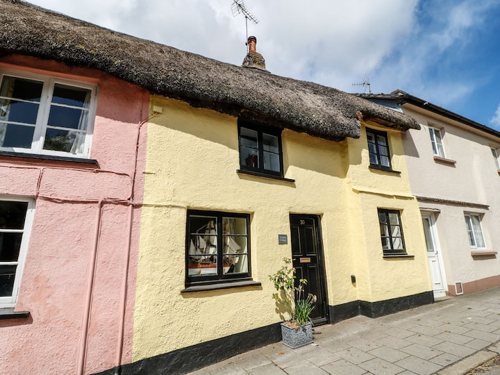 Charming Lemon Cottage in the heart of Devon