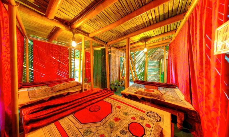 Amazing Stay amidst coffee plantations