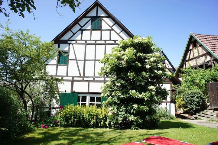 WOHLFÜHL-FERIENWOHNUNG MIT GARTEN - Kirchberg an der Murr - Çatı Katı