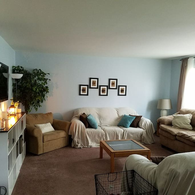 Living room space