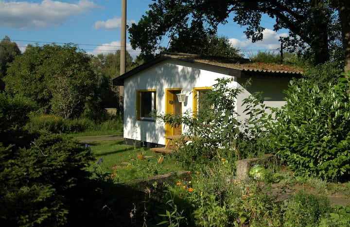 Ferienhaus Brandenburg Havel - Atelier