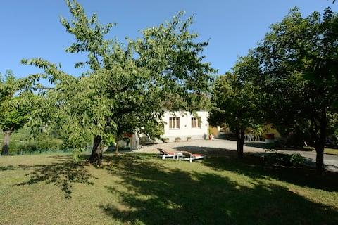 In Castellero, amidst the vinyards