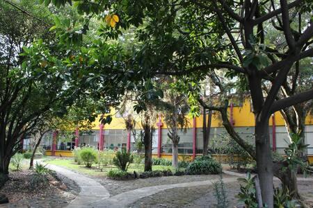 Cuarto en Casa Xitla Territorio de Encuentro y Paz - Tlalpan - Bed & Breakfast