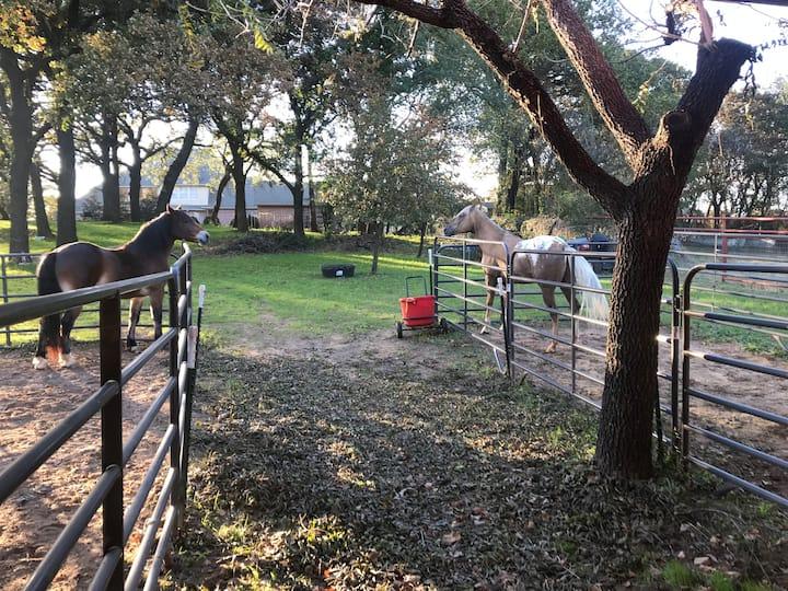 Gold Hill Acres-Quaint Farm Estate