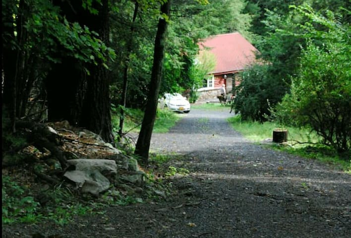 Driveway just down from a town-maintained paved road.