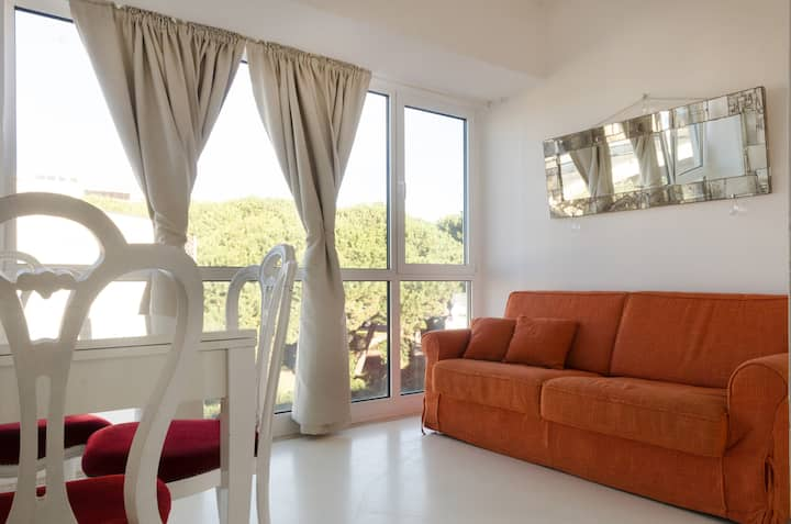 Nice apartment 50 mt from the beach