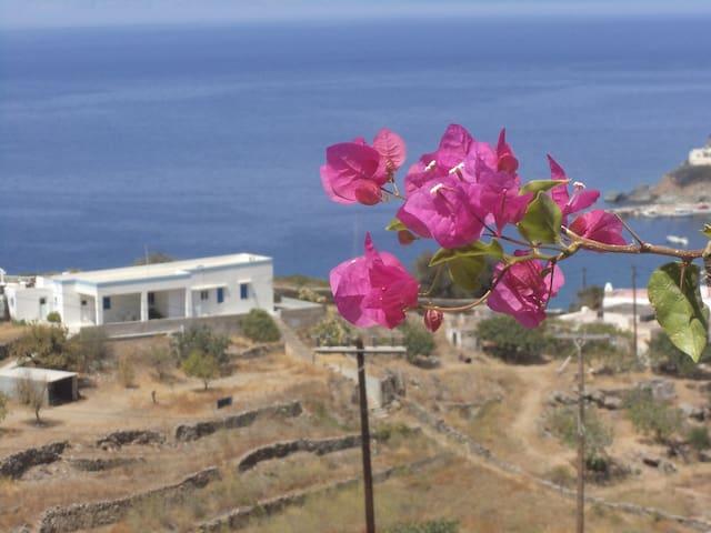 Kabanopoulos-Papadogianni ( Villa Anthi ) - Megalochori - House
