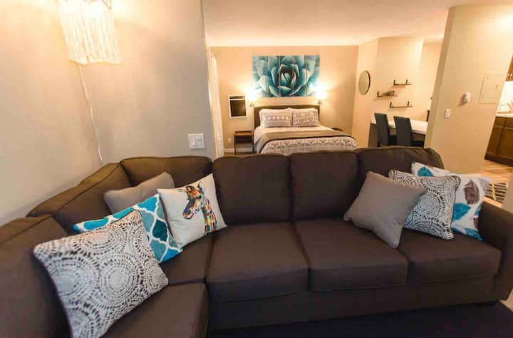 Pet friendly Contemporary Studio with bunks