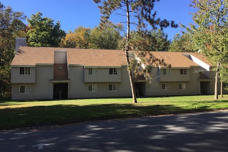 Cozy 1BR in Ideal commuter location - Clifton Park