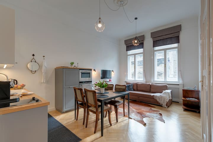 Fully refurbished apartment in downtown