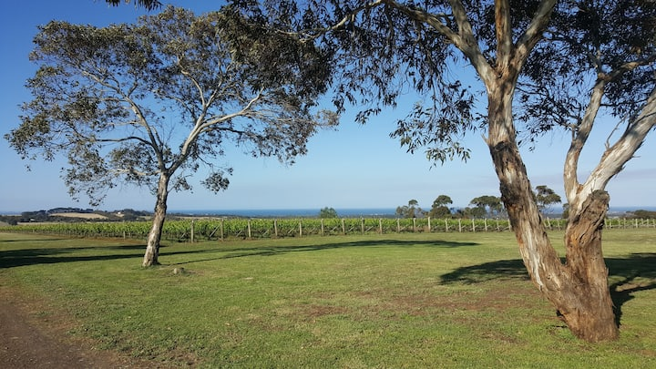 The Best of the Bellarine