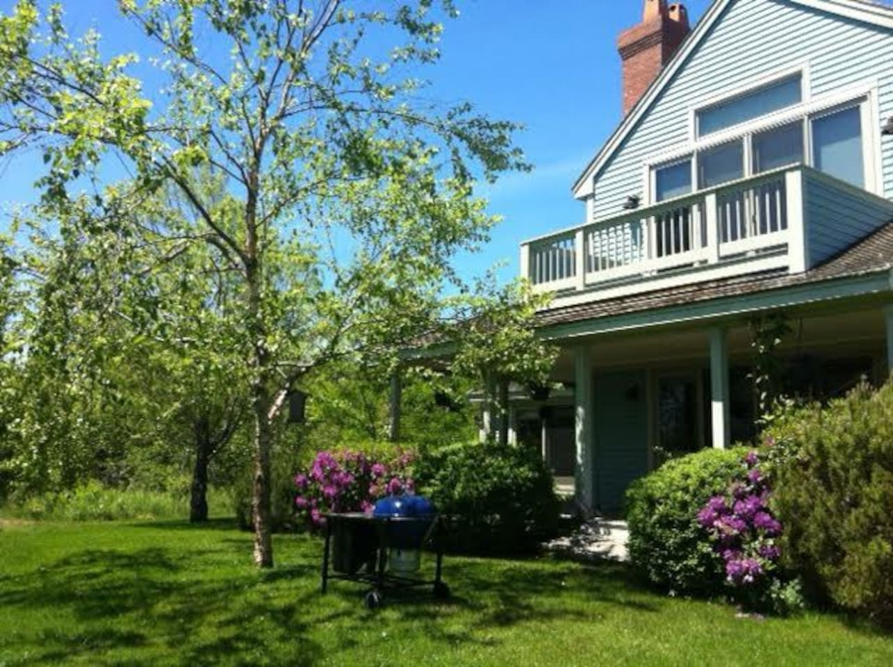 The Blue House in the summer