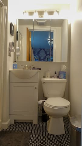 Bathroom is quite small, with a shower stall only. Hair dryer and basics provided.