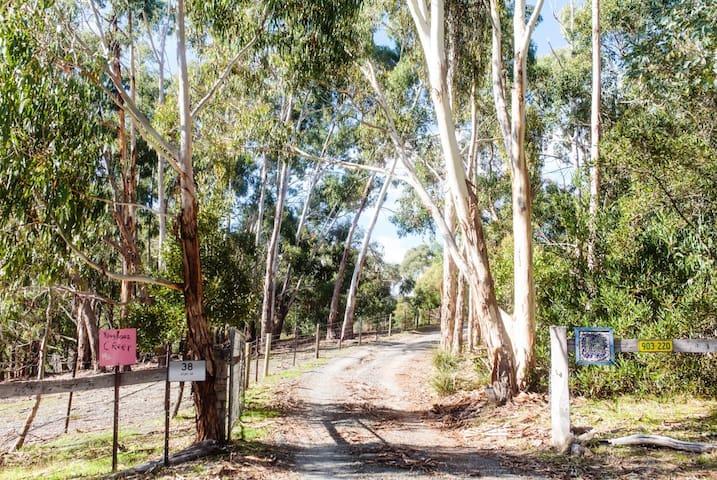 Kingfisher Creek, Adelaide Hills