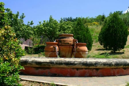 (C) Countryhouse in Madonie Park - Castelbuono