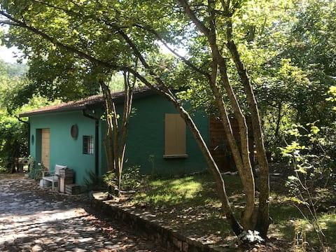 Un'unica casina con ogni comfort immersa nel verde