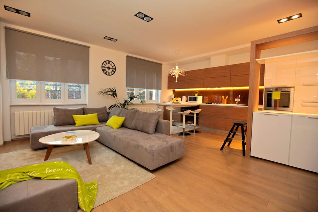 Apartment open space (40 m2) (Deluxe Cubo Maksimir 2-near centre)