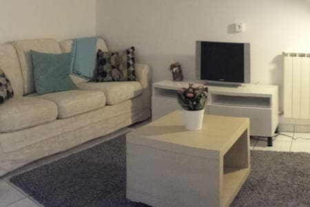 Independent STUDIO fully equipped 2 person's - Thoiry - Flat