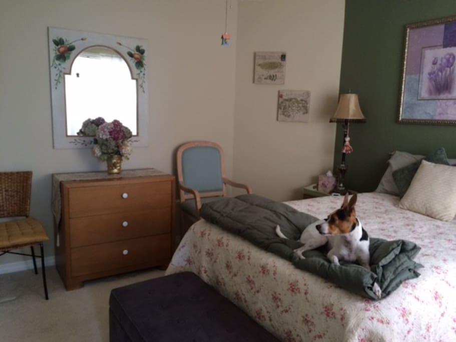 Same Bedroom