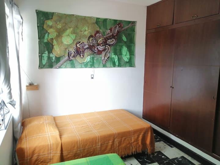 Habitación privada con dos camas sencillas (Boa)