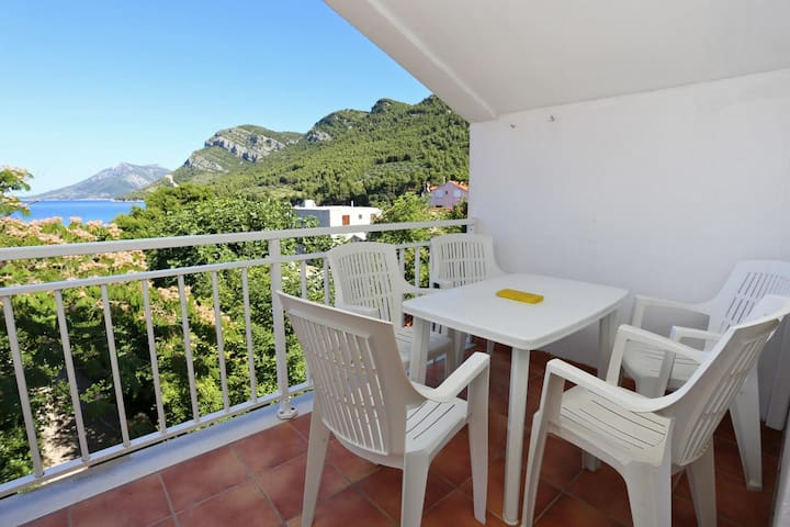 One bedroom apartment with terrace and sea view Žuljana, Pelješac (A-4576-a)