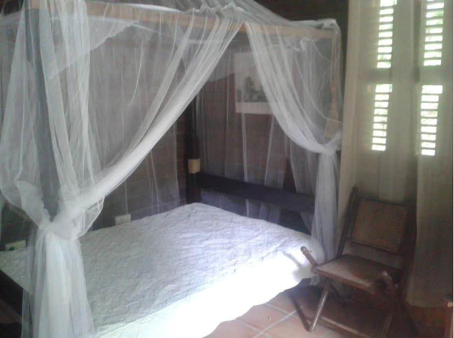 Chambre (la moustiquaire c'est pour la décoration car IL N'Y A PAS DE MOUSTIQUES à Anse Noire