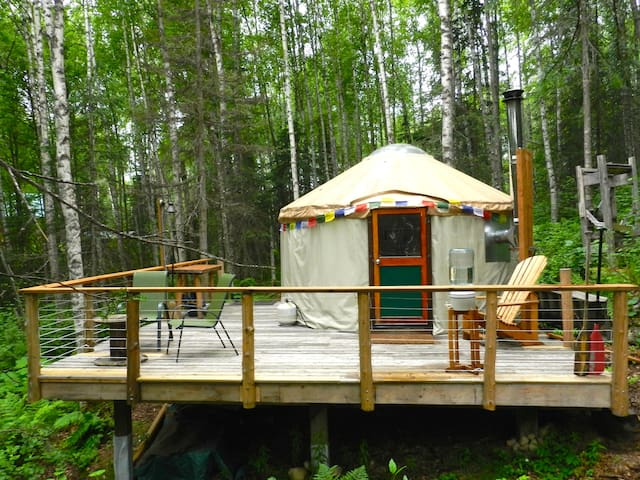 Forest Yurt, magical round living