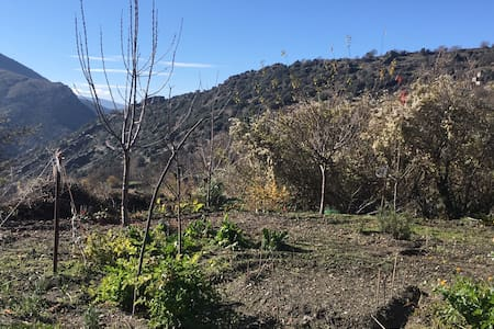 Habitación en casa de campo, jardín - Busquistar - 独立屋
