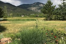 View from front yard.