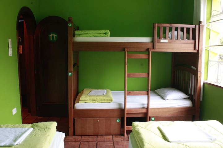 Quarto Verde A bed in shared mixed Dorm with 4 beds