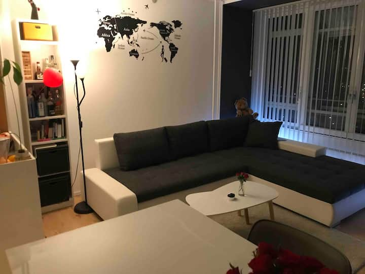 Modern apartment 15 min to center for 2-3 persons