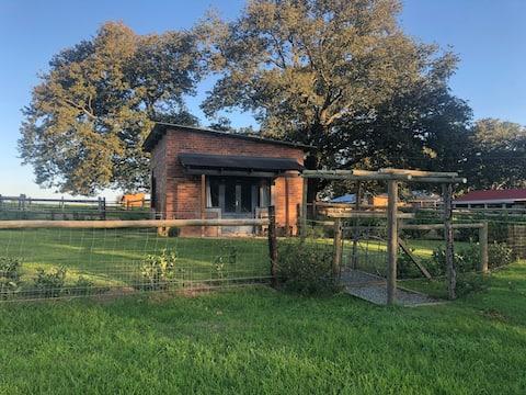 The Shepherds Hut, Springvale Farm