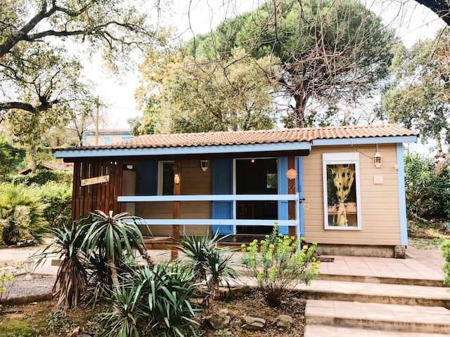 Airbnb® | Camping Parc Saint-James - Parc Montana ...