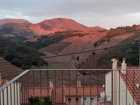 Banyuls-sur-Mer, una llar amb vista